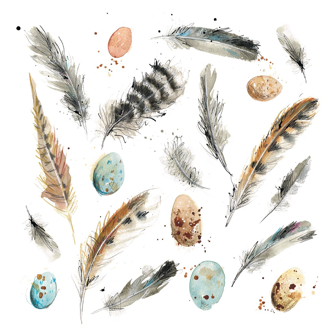 feathers and eggs laura mckendry