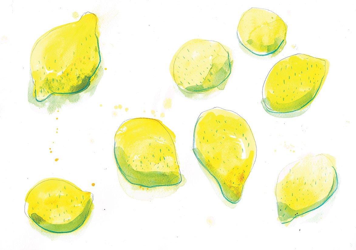 lemons blue pencil