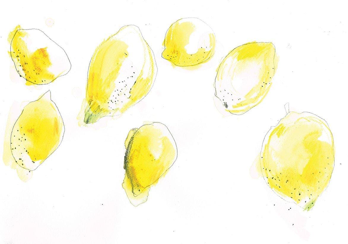 lemons pencil