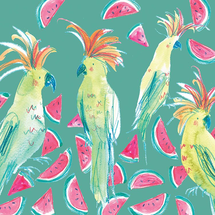 cockatoos and watermelons laura mckendry