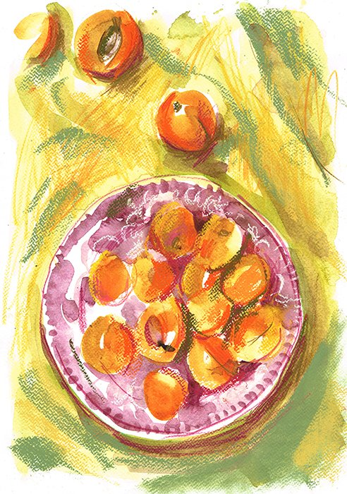 apricots laura mckendry food illustration