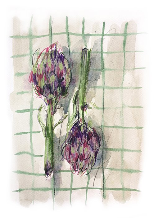 artichokes laura mckendry food illustration london