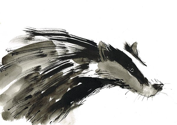 badger ink laura mckendry illustration
