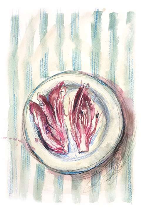 chicory food illustration laura mckendry