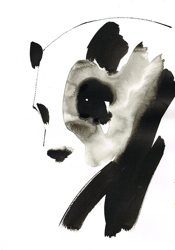 panda 2 laura mckendry ink illustration