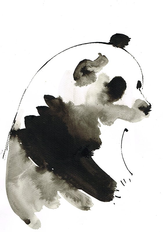 panda laura mckendry ink illustration