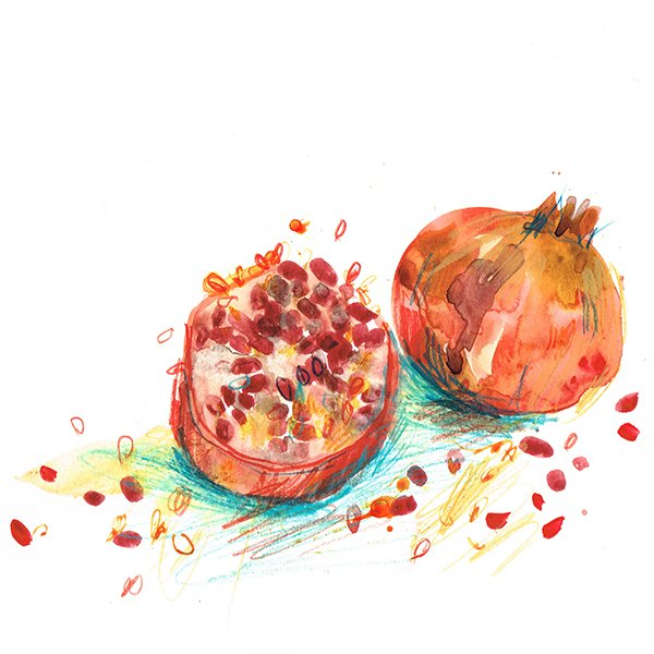 pomegranate laura mckendry food illustrator
