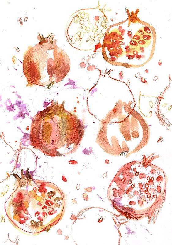pomegranates laura mckendry food illustrator