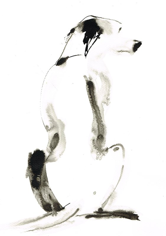 white dog ink laura mckendry