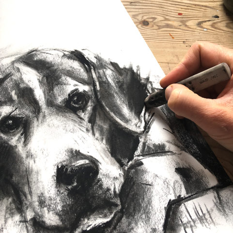 laura mckendry draw your dog workshop